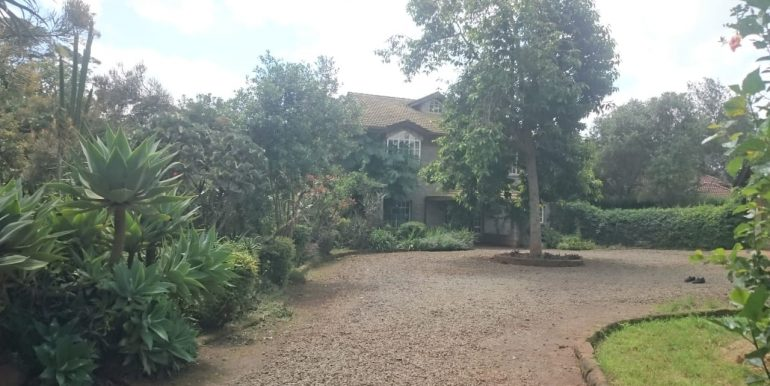 Ngong View Court (7)